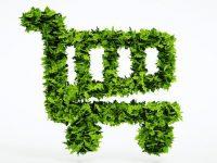 Un budget de guerre pour construire une croissance nouvelle autour du prétexte écologique